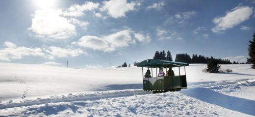 Oravská lesná železnica zatvorená 29.01.2020