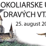 Plagát k podujatiu Sokoliarske umenie dravých vtákov 2019